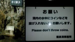 龍泉洞の中