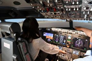 全世界で運航停止になっている、「あの」737MAXのシミュレーター(世界の航空会社でも、持っているところは稀といわれる)が操れるという航空科学博物館体験館オープンの嫌味なタイミングに拍手喝采かあ?