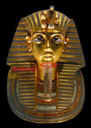 エジプト・紅海ツアー(レッドシーツアー)の研究(その3)ツタンカーメンの呪い