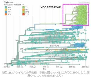 変異種:今週の名前は501Y.V2とVOC- 202012 / 01に:毎週名前が変わるから変異種というわけじゃない