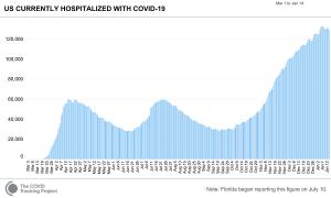 人体というセンサー:米国入院患者数の推移から第3波のピークアウトを読む